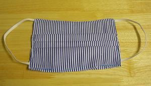 Adult Blue Striped Mask